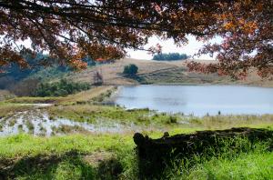 nottingham-road-kzn-berg-accommodation-drakensberg-midlands-balgowan-mooiriver112