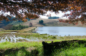 nottingham-road-kzn-berg-accommodation-drakensberg-midlands-balgowan-mooiriver112
