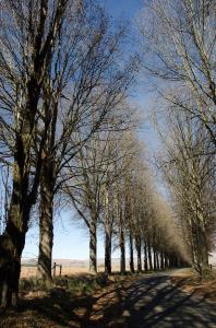 nottingham-road-kzn-berg-accommodation-drakensberg-midlands-balgowan-mooiriver166